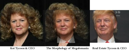 Morphology of Megalomania